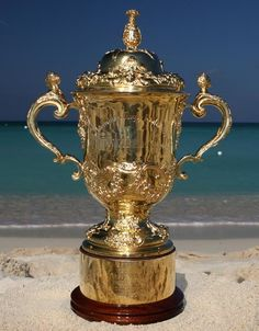 The Webb Ellis Cup, the Rugby World Cup English Rugby, Welsh Rugby, Rugby League, Rugby Players, Rugby Cup, Nz All Blacks, Sports Trophies, British Lions, Australian Football