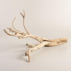 One of my favorite discoveries at WorldMarket.com: Natural Ghostwood Branch