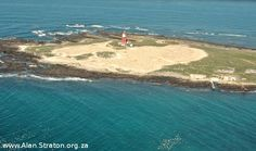Bird Island from the air. Bird Island is within the confines of Algoa Bay, offshore of Port Elizabeth. The local Algoa Bay Yacht Club have an annual overnight race around Bird Island. Port Elizabeth, Yacht Club, Fast Cars, The Locals, South Africa, Islands, Sailing, Landscapes, African