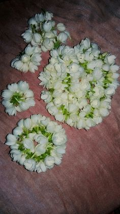 Nardo, Different Types Of Flowers, Gardenias, Sprouts, Jasmine, Beautiful Flowers, Vegetables, Rose, Weddings