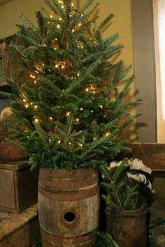 Christmas tree in wine barrel! LOVE!