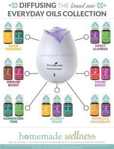 So as you (hopefully) know, last week Young Living unveiled their brand new Everyday Oils Collection for the Premium Starter Kit and it's beautiful for SO many reasons! Reason 1: It's got a brand new box and it's shiny! Reason 2: Melaleuca A, Stress Away & Citrus Fresh were added! Reason 3: We said a …