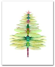 Dragonfly Tree cards- Winter solstice card- Christmas tree- 10 per box holiday card set- woodland christmas- dragonfly Christmas card Woodland Christmas, Christmas Tree, Christmas Ornament, Natural Christmas, Beautiful Christmas, Boxed Christmas Cards, Dragonfly Art, Dragonfly Quotes, Dragonfly Meaning