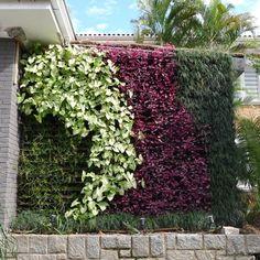 Edifícios do futuro poderão ter hortas na fachada - Casa e Decoração - UOL Mulher - jardim vertical