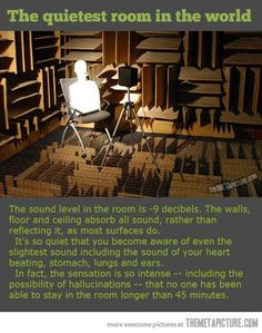 Oh my goodness. I want to try this, but I must admit I am a little terrified.