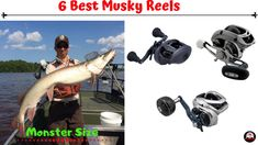 6 Best Musky Reels In 2020 [Never Failed Musky] Best Fishing Reels, Fly Reels, Fishing Tips, Fishing Lures, Fly Fishing, Taper Jig, Fish Varieties, Tackle Shop, Types Of Fish