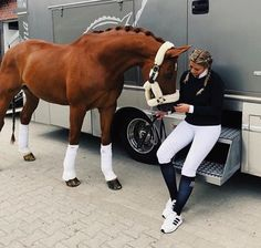 The most important role of equestrian clothing is for security Although horses can be trained they can be unforeseeable when provoked. Riders are susceptible while riding and handling horses, espec… Cute Horses, Pretty Horses, Horse Love, Horse Girl, Beautiful Horses, Animals Beautiful, Cute Animals, Horse Photos, Horse Pictures