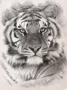 Siberian Tiger Cross Stitch Pattern***L@@K***~~ I SEND WORLD-WIDE ~~Free by LONE WOLF CROSS-STITCH PATTERNS LOOK, $4.95 USD