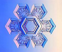 Stellar Plate Snowflake by Kenneth Libbrecht via staplenews tinyurl.com/7j45   #Snowflake #Kenneth_Libbrecht