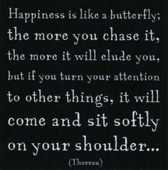 Happiness is like a butterfly :)