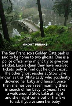 Golden Gate Park home to 2 ghosts! Short Creepy Stories, Spooky Stories, Horror Stories, Ghost Stories, Paranormal Stories True, Haunting Stories, Bizarre Stories, Paranormal Photos, Wow Facts