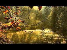 Albinoni - Adagio in G Minor - ( Autumn Landscapes ) .....  con tanto Amore .