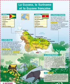 Fiche exposés : La Guyana, le Suriname et la Guyane française