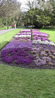 National Botanic Gardens - Dublin, Ireland