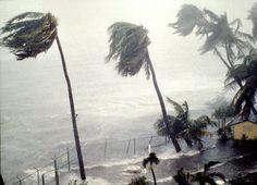 Tips on staying safe during hurricane season!