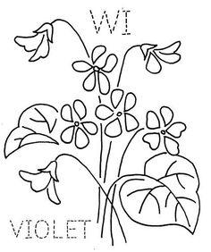 Wisconsin Violet | Flickr - Photo Sharing!