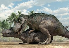 JURASSIC PORK  New illustrations depict how researchers believe dinosaurs mated