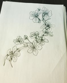 45 trendy flowers black and white tattoo cherry blossoms Cherry Blossom Drawing, White Cherry Blossom, Cherry Blossoms, Bild Tattoos, Body Art Tattoos, Tatoos, Black And White Flower Tattoo, Blossom Tree Tattoo, Cancer Tattoos