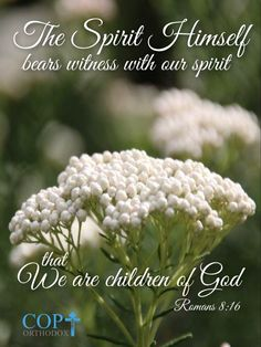 Romans 8:16 The Spirit Himself bears witness with our spirit that we are children of God