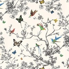 2704420 | Schumacher | Wallpaper | Birds and Butterflies