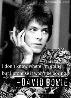 I don't know where I'm going, but I promise it won't be boring. -David Bowie