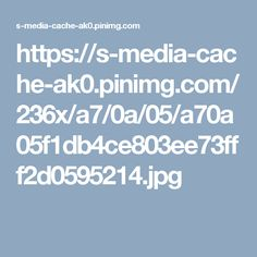 https://s-media-cache-ak0.pinimg.com/236x/a7/0a/05/a70a05f1db4ce803ee73fff2d0595214.jpg