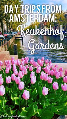 Day Trips from Amsterdam: Keukenhof Gardens