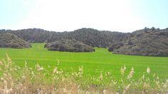 Buenos días, peregrinos!!! Con paisajes como estos ¿quién no se anima a realizar el #CaminodeSantiago?  www.caminodesantiagoreservas.com