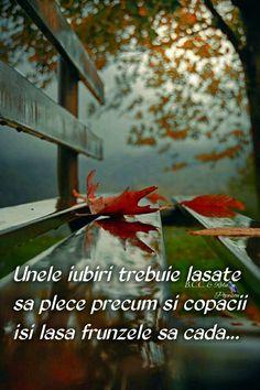 Sad Quotes, Psalms, Memories, Words, Life, Virginia, Origami, Inspirational, Facebook