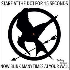 The hunger games this is so cool it actually works