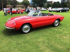 Series I Spiders - Photo thread. - Page 17 - Alfa Romeo Bulletin Board & Forums