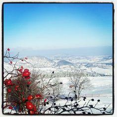 Panorama dall'Eremo Monte Carpegna verso la Riviera Romagnola - Instagram by @lavalmarecchia