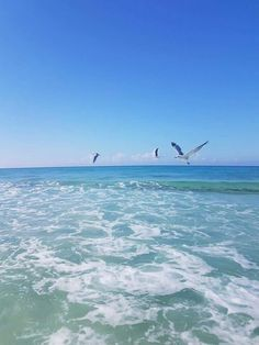 Panama City Beach Florida, Panama City Panama, Florida Beaches, Airplane View, Waves, Outdoor, Outdoors, Ocean Waves, Outdoor Games