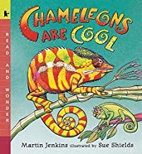 I just found these great chameleons from The Elementary Art Room! Read more about how to make your own here. A few great chameleon read-a. Art Books For Kids, Childrens Books, Deep Space Sparkle, Rome Antique, Wonder Book, This Is A Book, Cool Books, Art Lessons Elementary, Elementary Teacher