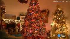 Woman has 26 Christmas trees, even one in bathroom