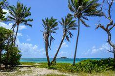 Martinique - Anse à Prunes