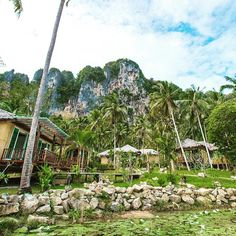 Staying here when we go to Thailand!