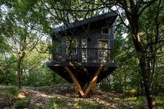 Domček v korune duba House In The Woods, Arches, Dubai, House Styles, Outdoor Decor, Plants, Wood Houses, Home Decor, Timber Homes
