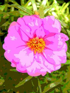 Tropical Pink Flower Power Posterization Fine Art Print