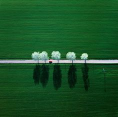 Aerial view of a road through the green fields, Germany