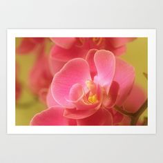 Pink Pastel Art Print by bellpics - $22.88