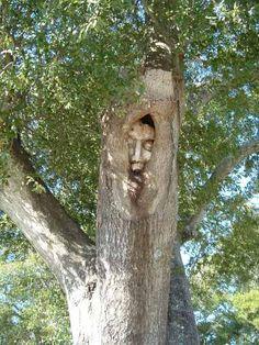 St Simons Island Tree Spirit