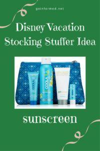 Disney Vacation Stoc