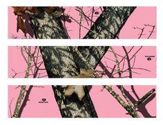 Pink Mossy Oak Camo edible cake strips cake topper decorations