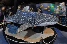 Lego Whale Shark by kelvin255, via Flickr