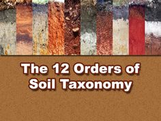 Permaculture Tip of the Day - The 12 Orders of Soil Taxonomy - School of Permaculture