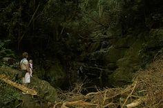 Tsitsikamma National Park Tsitsikamma National Park, Knysna, Wilderness, National Parks, Couple Photos, Couple Shots, Couple Photography, Couple Pictures