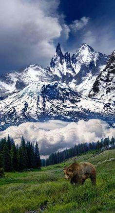 Landschaft und Berge