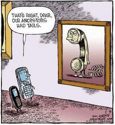 That's right, Dear. Our ancestors had tails.