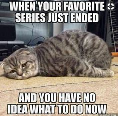When your favorite series just ended... | RATMJ Blog